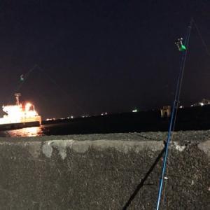 根魚狙いで夜のブッコミ釣り☆彡磯子岸壁