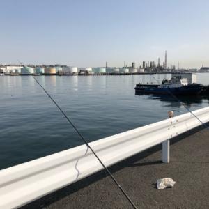 天気良好〜最高の釣り日和!!!チョイ投げ☆彡根岸湾
