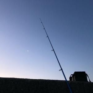 そろそろ良いシーズンに突入しそうなシロギス釣行☆彡横浜