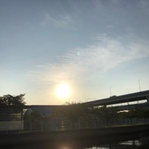 早朝にハゼ捕獲からマゴチattack☆彡横浜