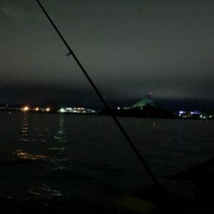 深夜のウキ釣りからの早朝ショアジギング☆彡福浦