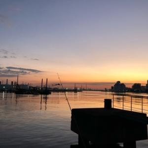 朝まずめにサクサクサクッとアジを釣ろう☆彡根岸湾