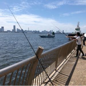 そろそろ釣りたい!!!タコ狙い☆彡横浜
