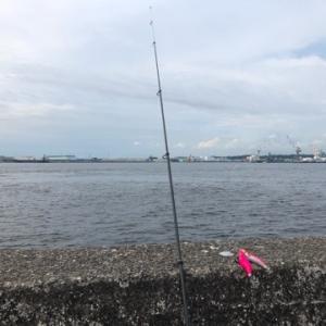 大苦戦中のタコ釣り………★彡横浜