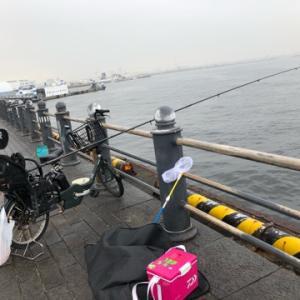 日中のサビキ釣りでサバ狙い☆彡みなとみらい