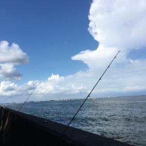 2019…オールナイト釣行開催☆彡福浦