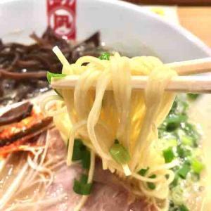 ◆福岡空港 煮干拉麺 凪◆