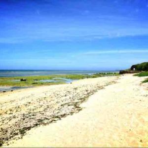 ◆沖縄 読谷村 もめんばるビーチ◆