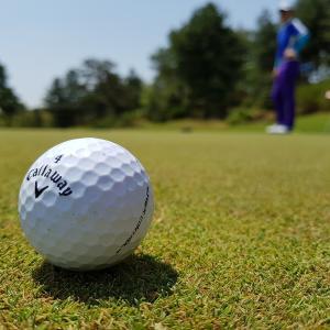 golfからの学び