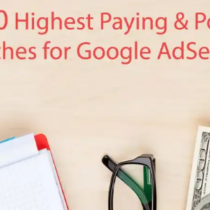 Top Highest Paying Niche ideas To Increase Your Adsense Earning