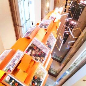 表参道ヒルズのクリスマスツリー CHRISTMAS ILLUMINATION「Brilliant Aqua Tree」へ