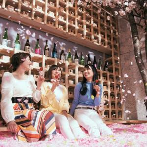 120万枚の花びらに埋もれるチルアウトバー「SAKURA CHILL BAR 2020 by 佐賀」開催