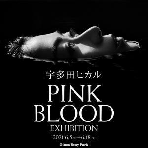 宇多田ヒカルの新曲MVの世界がソニーパークに出現