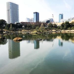 江戸初期の大名庭園の一つ旧芝離宮恩賜庭園に行ってきた