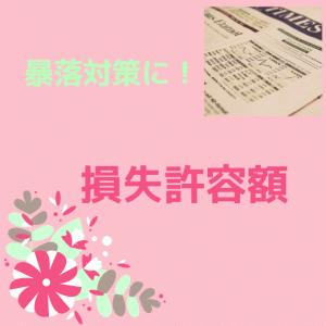 【ポートフォリオ投資】株・FX暴落対策に!損失許容額について