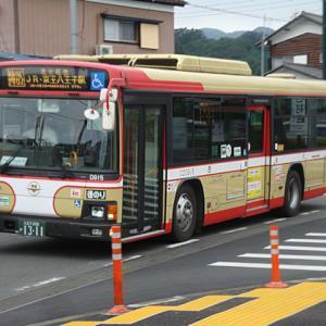 【撮影記】西東京バス/日野ブルーリボンⅡ・ノンステップバスを撮る