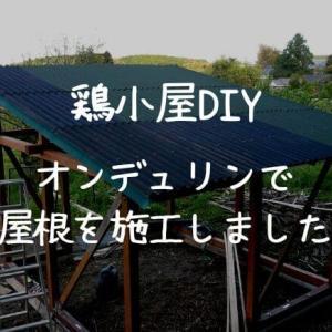 【鶏小屋DIY】屋根をオンデュリンで施工しました