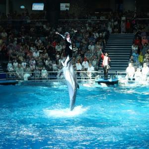 【旅行】10年ぶりのイルカショー。東京最先端の水族館、アクアパーク品川にいってきました。青春18きっぷ関東旅行➂