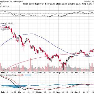 【PLUG】株価下落に悲観する必要なし、将来性に賭ける!!!