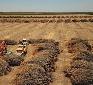 【PLUG】西海岸でグリーン水素生産施設(廃水を再生利用)建設を発表