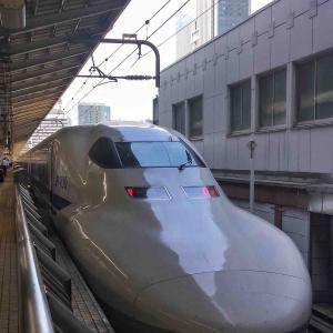 置き換え進む東京近郊を走るかつての主力 ~新天地での主力としての再起へ~【2019.8.7】