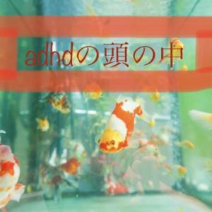 ADHDの頭の中は金魚がたくさん泳いでいる。