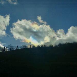 虹色の雲*彩雲*でしあわせのお裾分け