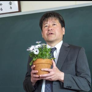 NHK「ひきこもり先生」見ましたか?