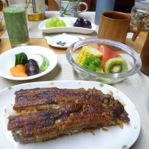 うな丼、ぬか漬け、野菜サラダで朝ごはん♪笠間市の量深のうな丼、今まで食べた中で一番美味しい~