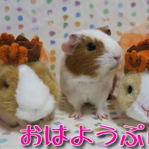 秋の味覚といえば?かぼちゃ+シュークリーム祭り66