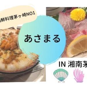 【あさまる】湘南茅ヶ崎の超有名網元料理店でランチしたので食レポします!