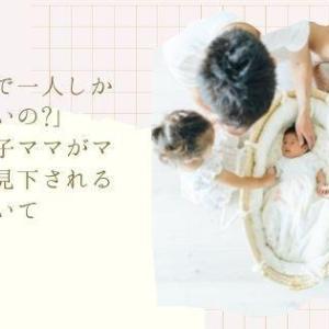 「なんで一人しか産まないの?」一人っ子ママがママ友に見下される件についての愚痴ブログ