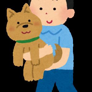 犬を飼う、初めて飼うにはどこからお迎えするの?【ブリーダー編】