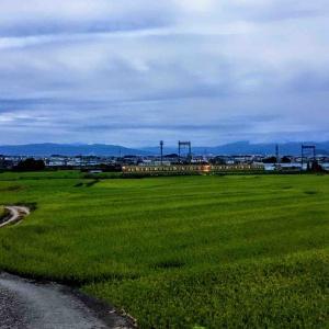 近鉄南大阪線 千股池周辺