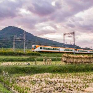 千股池周辺 近鉄電車と田んぼ