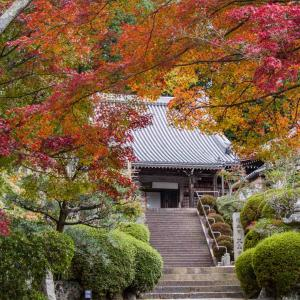 葛城古道を訪ねて 九品寺の紅葉