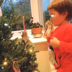 窓に映るクリスマスツリー