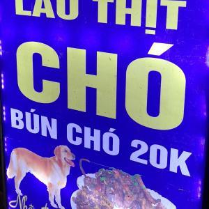 【閲覧注意】ベトナム、ハイフォンの犬肉料理屋【場所と味、猫肉もあるよ】