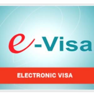 【ベトナム】観光ビザを電子ビザ(e-VISA)で簡単に取得する方法【2019年】