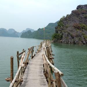 【ベトナム】ハイフォンからカットバ島までバイクで行ってみました