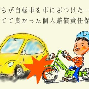 自転車でひとんちの車にぶつかって傷をつけてしまい、ごめんなさいする話。 そして個人賠償責任保険で賠償する話。