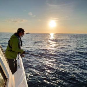イカを狙う…日曜アングラーVSサメ