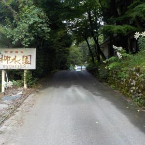 【咲花温泉 柳水園】尾崎士郎ゆかりのエメラルドグリーンの温泉宿