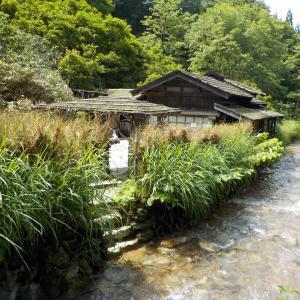 【秋田県 乳頭温泉郷】湯めぐり手帖を持て巡る旅