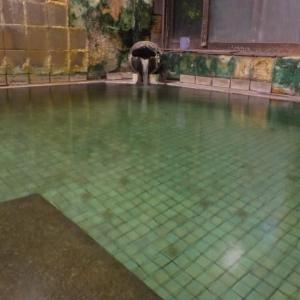 【新潟県 咲花温泉】温泉地での湯めぐり