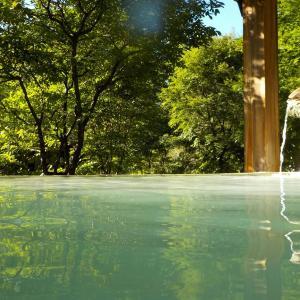 【龍神温泉 元湯】日本三大美人の湯の日帰りの共同浴場