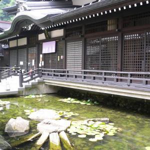 【城崎温泉 御所の湯】火伏防災・良縁成就の美人の湯