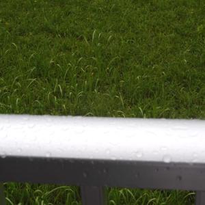 本日は雨の特異日