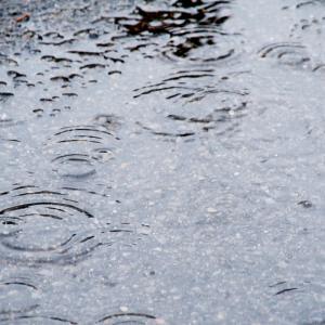 梅雨明けはまだか…