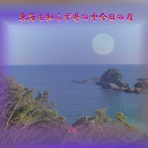 『 東海も知らず井の中今日の月 』TAO575交心zwq1001